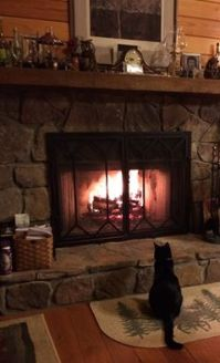 Itzey at fireplace
