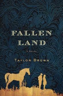 Fallen Land cover