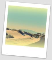 desert road polaroid