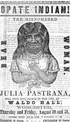 julia-flyer