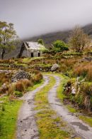abandoned-irish-cottage