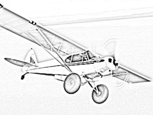 Scout_Plane